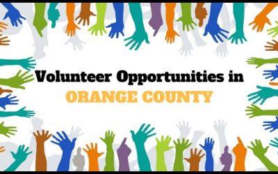 Food Bank Volunteer Opportunities