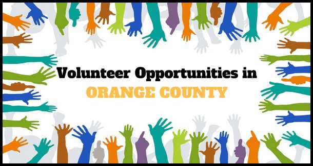 Food Bank Volunteer Opportunities